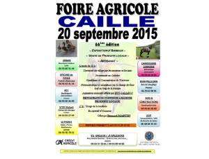 caille2015