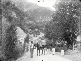 m6-1901