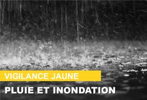Vigilance-jaune-pluie-et-inondation_large